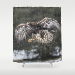 Eagle In The Snow. Shower Curtain
