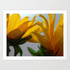 Sun 2 Art Print