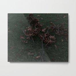 Autumn Fallen Branch Metal Print