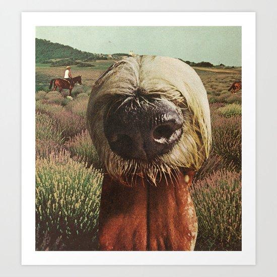 dog breath across a purple plain Art Print