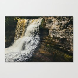 Laughing Whitefish Canvas Print