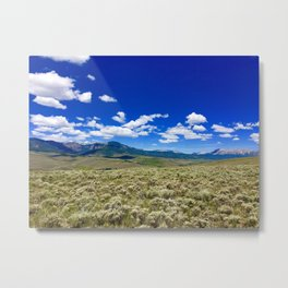 Sage Country Metal Print
