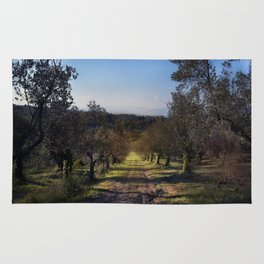 the way among the olive trees Rug