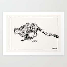 Cheetah in Flight Art Print