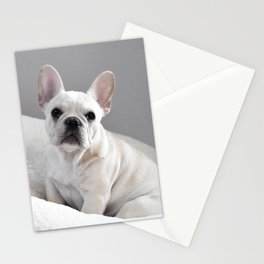 Cream Frenchie Stationery Cards