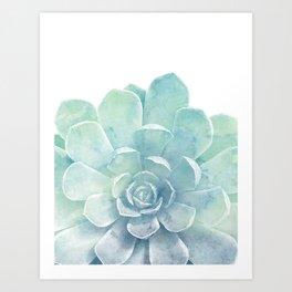 Large Succulent Art Print