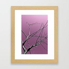 Reaching Violet Framed Art Print