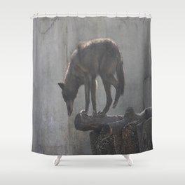 How do I get down? Shower Curtain