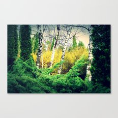is it the sun? Canvas Print