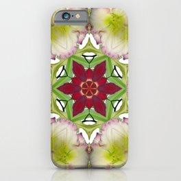 Daylily mandala 6 - Hemerocallis kaleidoscope iPhone Case