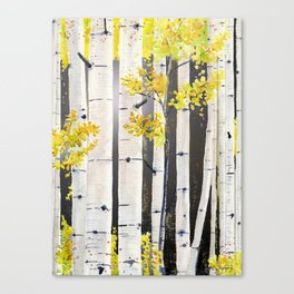 Birch Tree Canvas Print