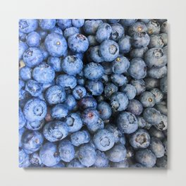 nice blueberries Metal Print