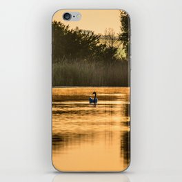 Golden morning iPhone Skin