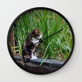 Amsterdam Cat Wall Clock