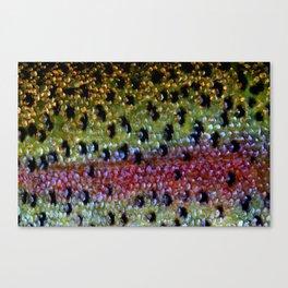 Beautiful Skin, Rainbow Bronze Canvas Print