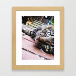Felix the Cat Framed Art Print