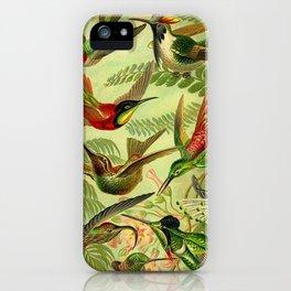 HUMMINGBIRD COLLAGE- Ernst Haeckel iPhone Case