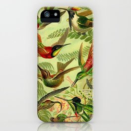 HUMMINGBIRD COLLAGE- Ernst Haeckel iPhone Case