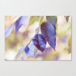 Autumn Crush Canvas Print