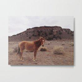 Wild One Metal Print