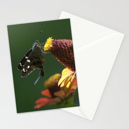 Longtail Skipper Stationery Cards