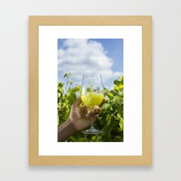 Vineyard Framed Art Print