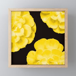 Large Yellow Succulent On Black Background #decor #society6 #buyart Framed Mini Art Print