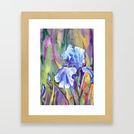 Watercolor Iris flower Framed Art Print
