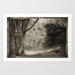 Sims Pond Art Print