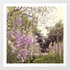 The secret garden! Art Print