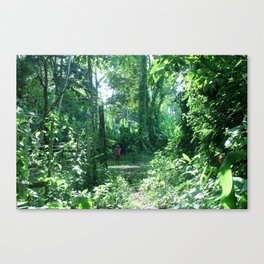 Her Forest Home Canvas Print