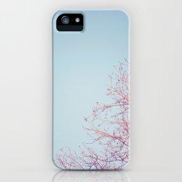 Peek-a-Boo Moon iPhone Case
