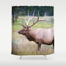 Yellowstone Shower Curtain