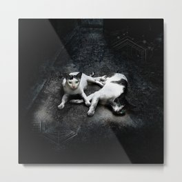 Cats in the Alley Metal Print