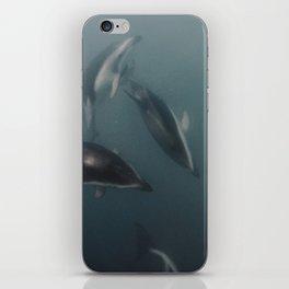 Les Wild Dusky Dolphins  iPhone Skin