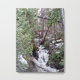 High Mountain Creek Metal Print