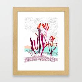 Kangaroo paw illustration Framed Art Print