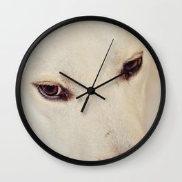 Eyes to the Soul Wall Clock