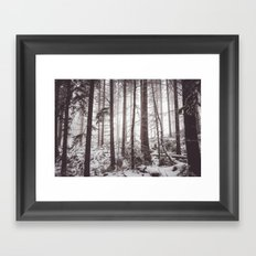 Nemophily Framed Art Print