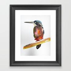 Azure Kingfisher Framed Art Print