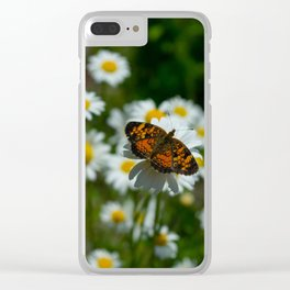 butterfly in the daisies Clear iPhone Case