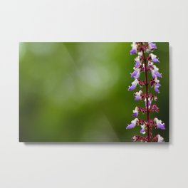 Every flower is a soul blossoming in nature. Metal Print
