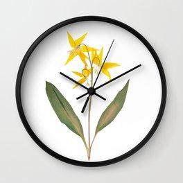 Glacier Lily - Yellow Mountain Wildflower Wall Clock