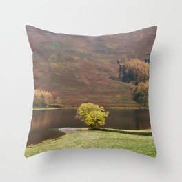 Autumnal colour. Buttermere, Cumbria, UK. Throw Pillow