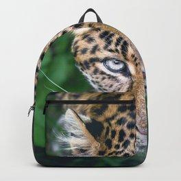 Splendid Beautiful Jungle Leopard Staring Head Profile Close Up Ultra HD Backpack