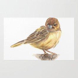Sparrow bird Rug