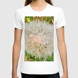 Seed Dispersement Device T-shirt