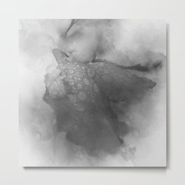 Trampled Rose Greyscale Manipulated Photo with Dew Drops Metal Print