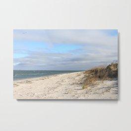Ocean, Beach and Dunes Metal Print