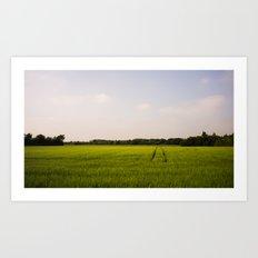 Corn 2 Art Print